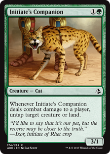 Initiates_Companion