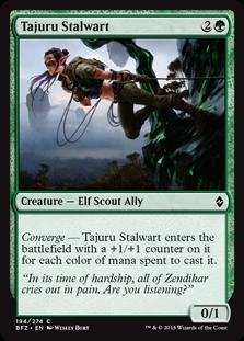 Tajuru Stalwart