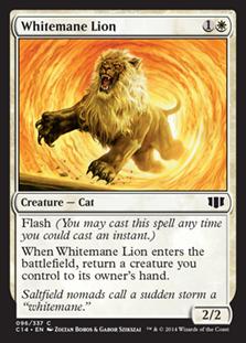 Whitemane Lion