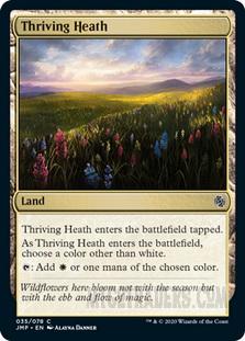 Thriving_Heath