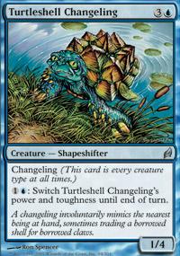 Turtleshell Changeling