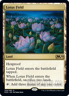 Lotus_Field