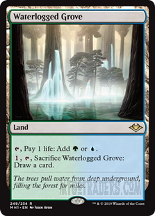 Waterlogged_Grove