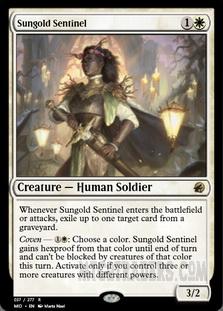 Sungold_Sentinel